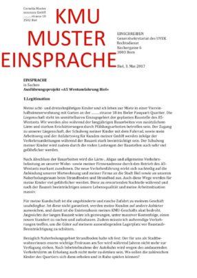 thumbnail of KMUEinsprache